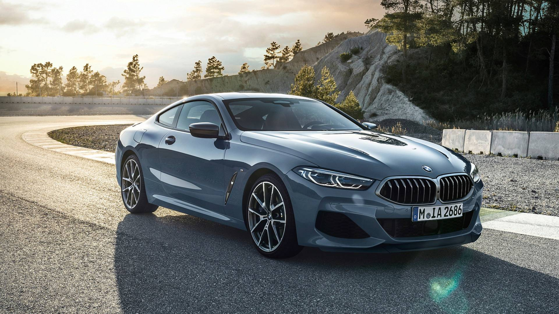 BMW 8 Series Luxury Coupe